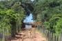 Erosão no morro preocupa moradores da parte final da Rua Graciliano Manoel Gomes