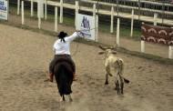 Rodeio Internacional é a grande atração para este final  de semana em São José